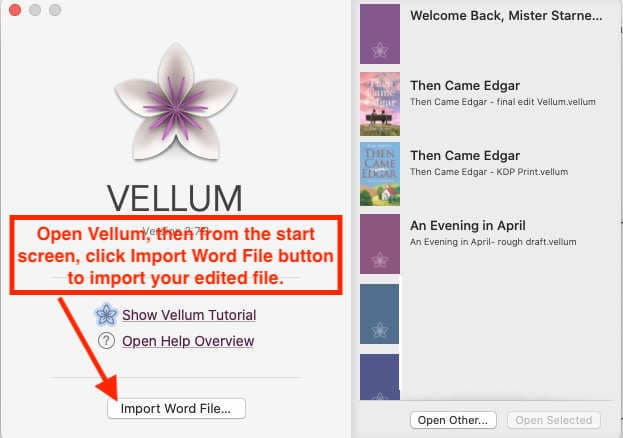 How to import MS Word file into Vellum