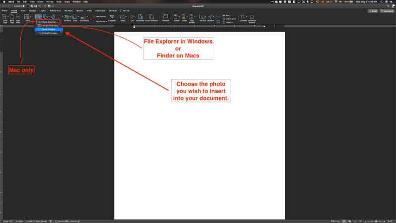 insert picture in word document