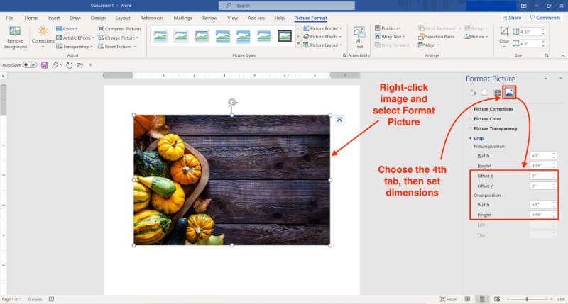 crop images in microsoft word using dimension and offset settings