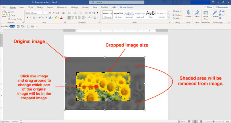 crop images in microsoft word
